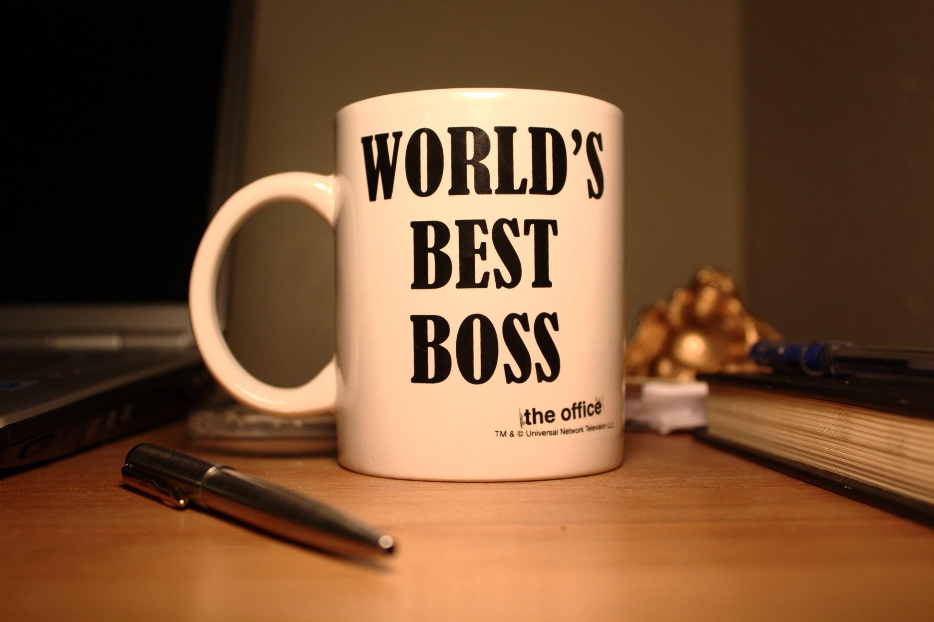 World's Best Boss by Kumar Appaiah
